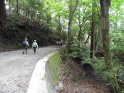 2016-5-15奈良・春日山 181