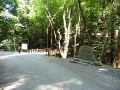 2016-5-15奈良・春日山 121
