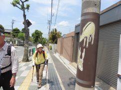 2016-5-15奈良・春日山 005