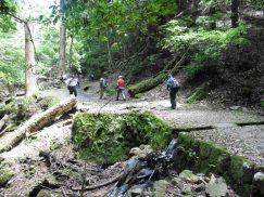 2016-5-15奈良・春日山 062