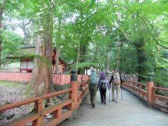 2016-5-15奈良・春日山 228