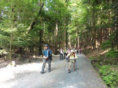 2016-5-15奈良・春日山 174