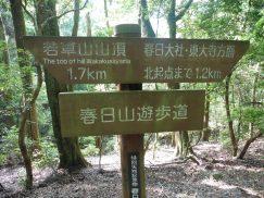 2016-5-15奈良・春日山 197