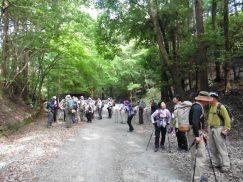 2016-5-15奈良・春日山 189