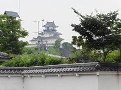 2016-6-19蓬莱橋・掛川城 250