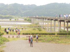 2016-6-19蓬莱橋・掛川城 168