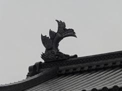 2016-6-19蓬莱橋・掛川城 246