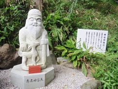 2016-6-19蓬莱橋・掛川城 101