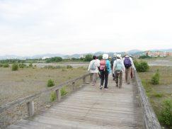 2016-6-19蓬莱橋・掛川城 155