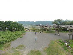 2016-6-19蓬莱橋・掛川城 167