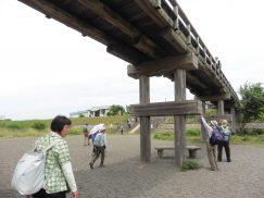 2016-6-19蓬莱橋・掛川城 185