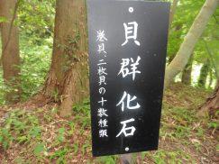 2016-6-19蓬莱橋・掛川城 067