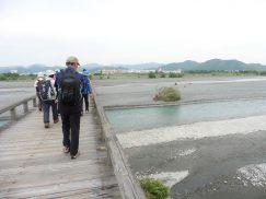 2016-6-19蓬莱橋・掛川城 144