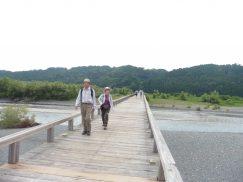 2016-6-19蓬莱橋・掛川城 152