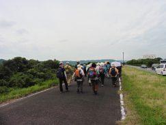 2016-6-19蓬莱橋・掛川城 187