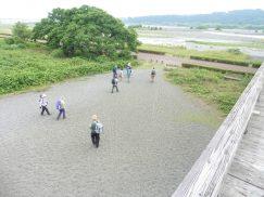 2016-6-19蓬莱橋・掛川城 159