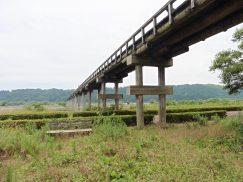 2016-6-19蓬莱橋・掛川城 184