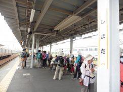 2016-6-19蓬莱橋・掛川城 198