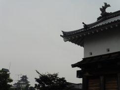 2016-6-19蓬莱橋・掛川城 249