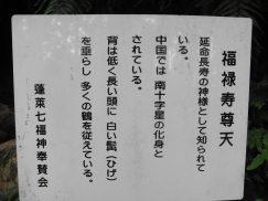 2016-6-19蓬莱橋・掛川城 095