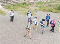 2016-6-19蓬莱橋・掛川城 157