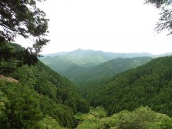 錫杖ヶ岳 060