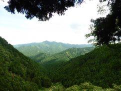 錫杖ヶ岳 109