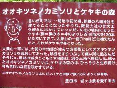 8-11キツネノカミソリ・夏焼山 015