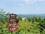 8-11キツネノカミソリ・夏焼山 099