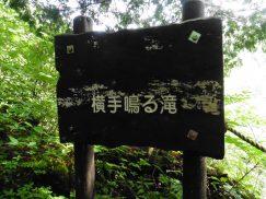 五色ヶ原2016-7-31 320